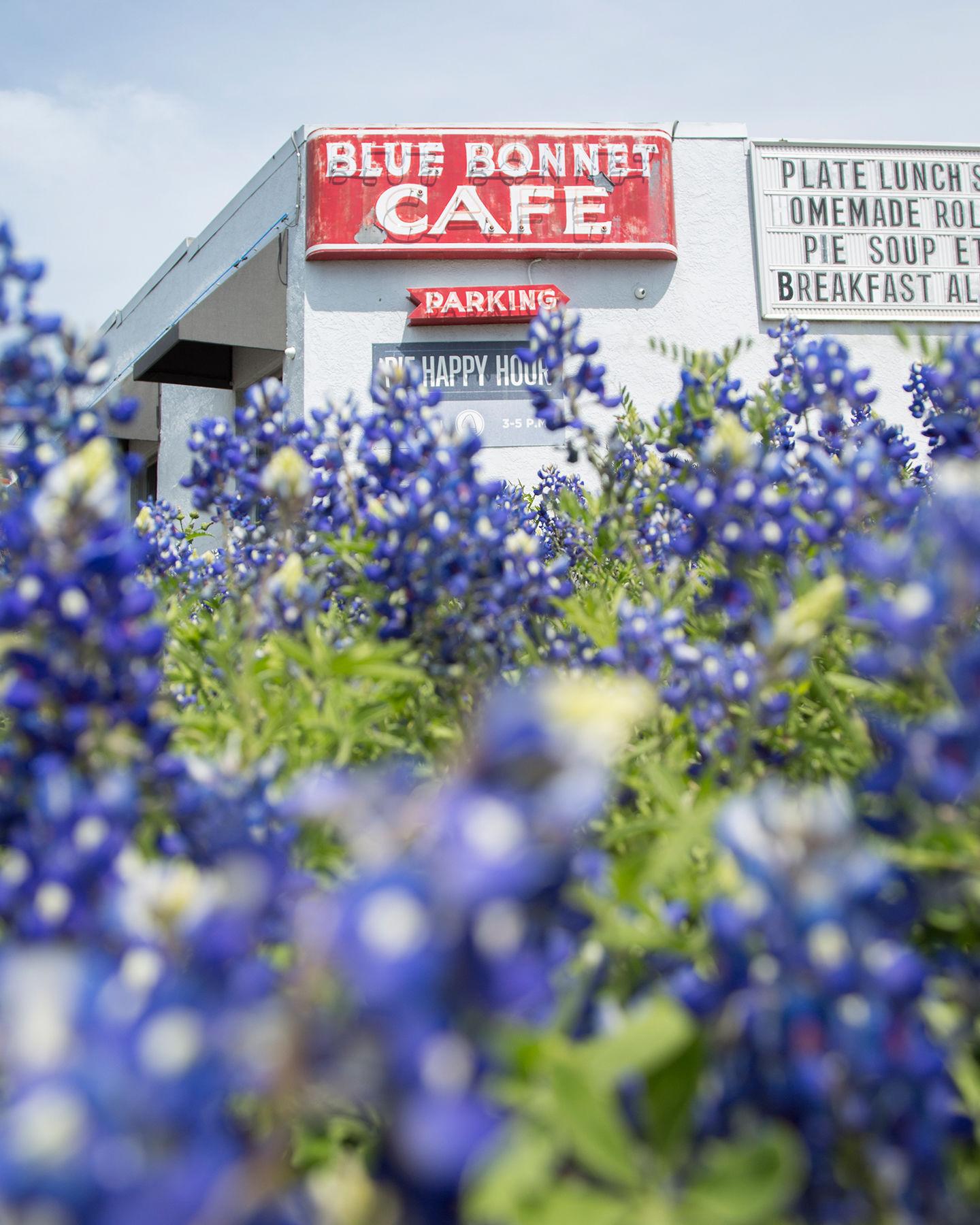Blue Bonnet Cafe Web
